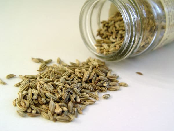 Fennel Seed in Breast Enhancement Pills