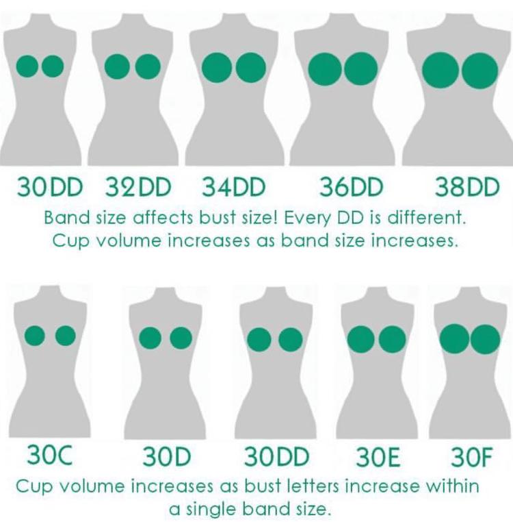 sister boob sizes